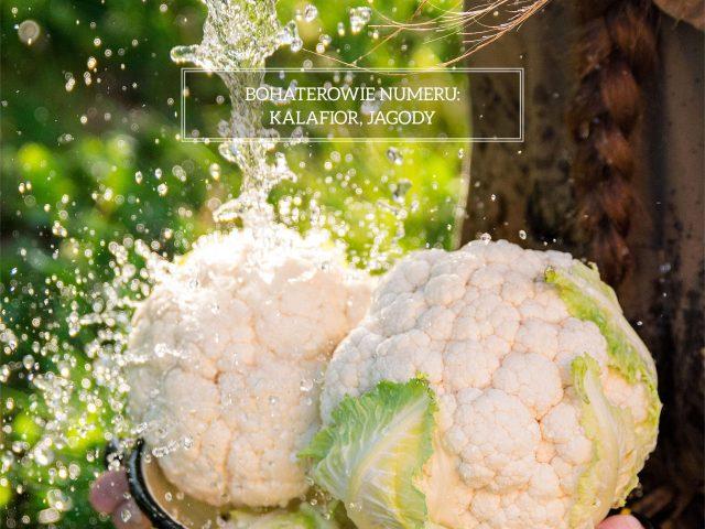 Dolnośląski Magazyn Kulinarny KOCIOŁ – dwudziesty numer