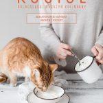 Dolnośląski Magazyn Kulinarny KOCIOŁ – numer XXIII